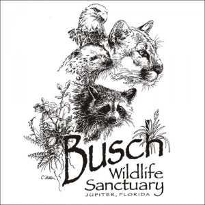 Busch Wildlife Sanctuary t-shirt design and print